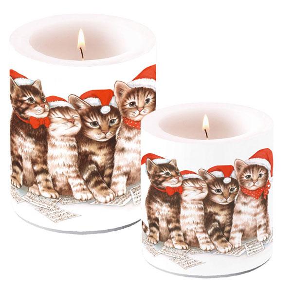 Velas de navidad con gatos